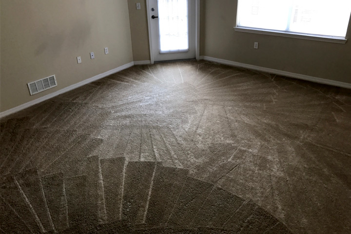 Tallahassee Carpet Cleaning Case Studies