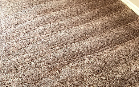 Rotovac-Carpet-Cleaning-After-Tallahassee Florida
