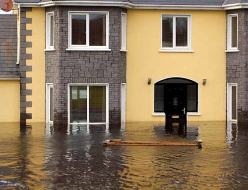 Water Damage Restoration – The Process