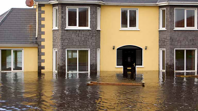 Water Damage Restoration-tallahassee