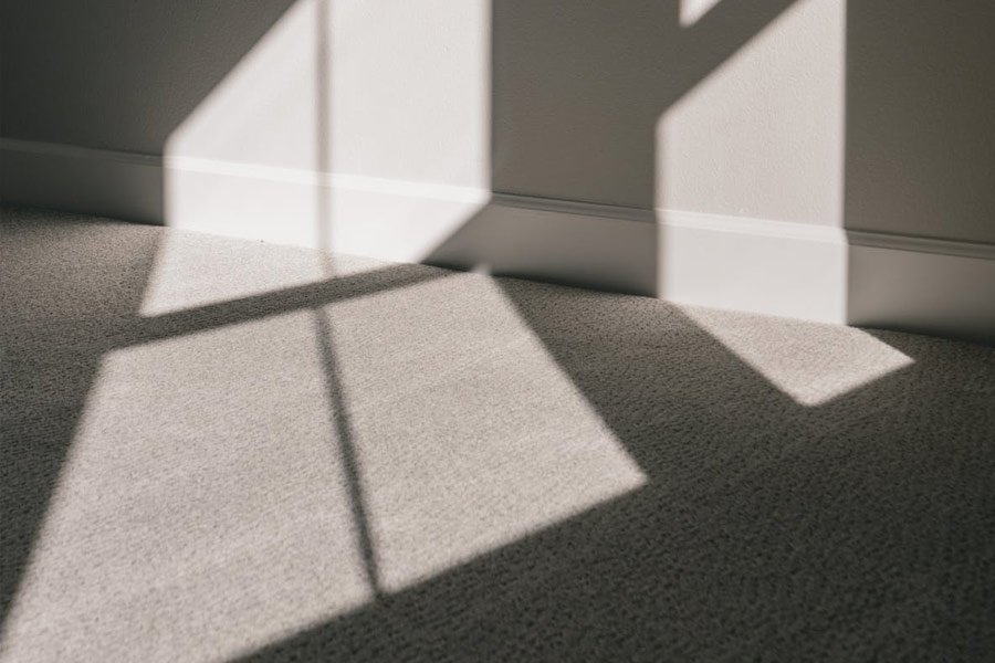 Carpet Cleaning Service Tallahassee Florida Image