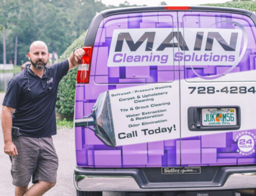 Rug Cleaning and Carpet Cleaning Solutions