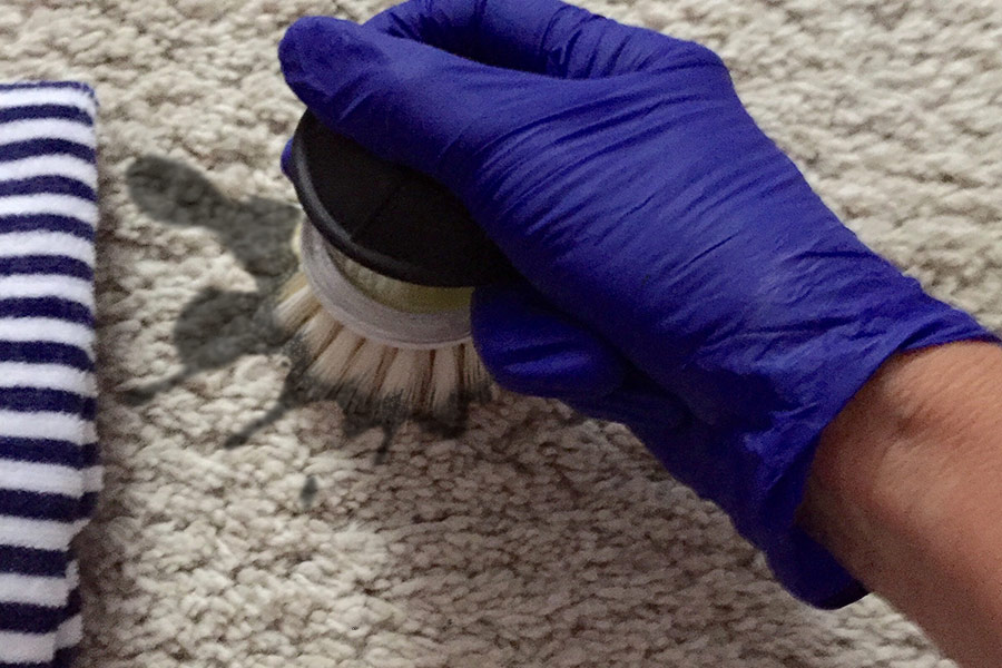 Cleaning Carpet Stains image cover image